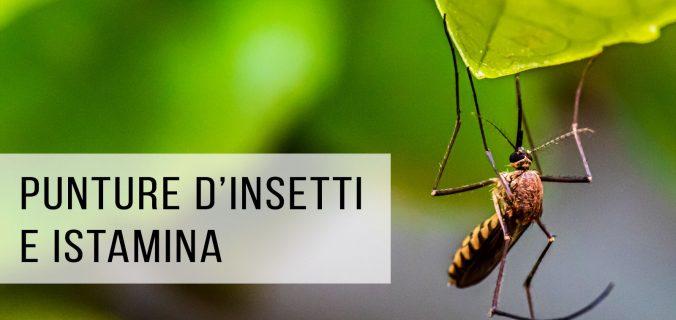 Read more about the article DIFENDERSI DALLE PUNTURE D'INSETTO IN SICUREZZA